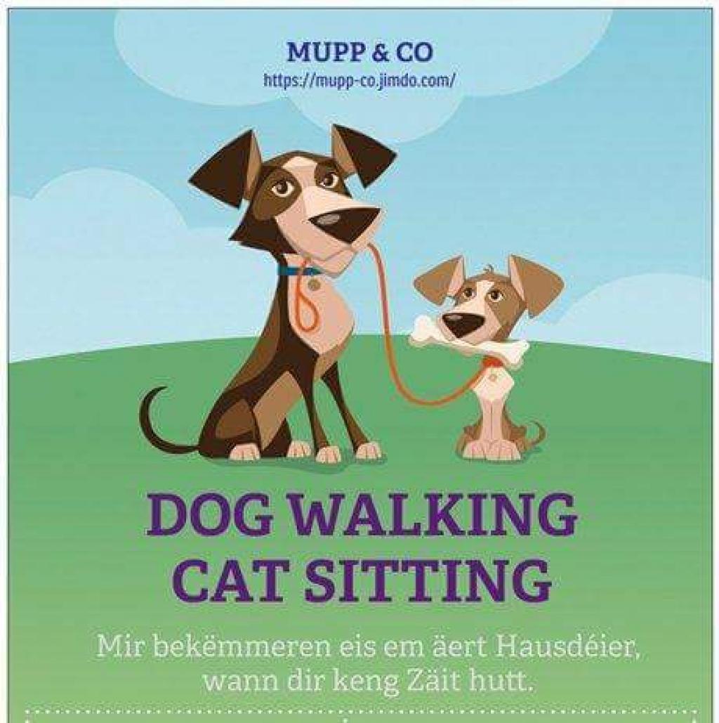 DOG WALKER - CAT SITTER